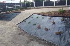 Ogród-Głogów-2-12