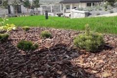 ogród-malawa-10