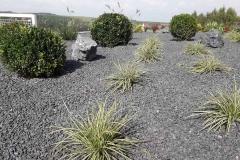 ogród-malawa-7