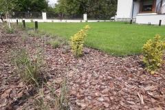 ogród-Trzebownisko-5