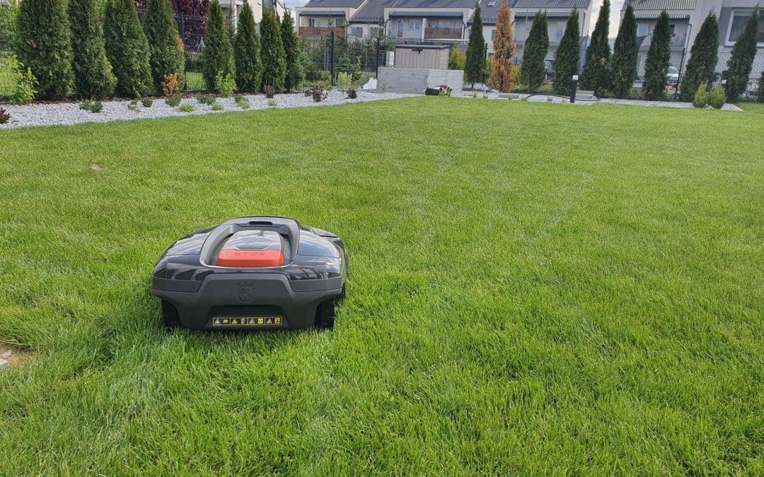 Dzień koszenia trawnika :D sobota?
