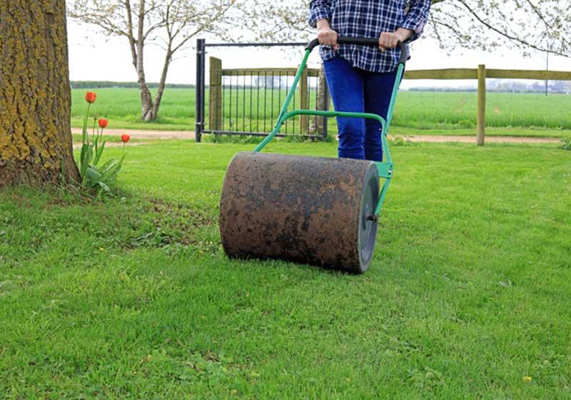 Wałowanie trawników – kiedy należy to robić?