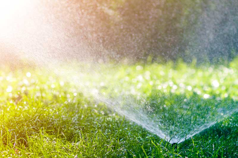 Najlepsze metody i sposoby nawadniania trawnika